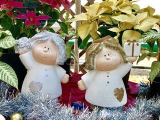 屋内,植物,白,かわいい,プレゼント,人形,クリスマス,ポインセチア,ホワイト,飾り,フォトジェニック