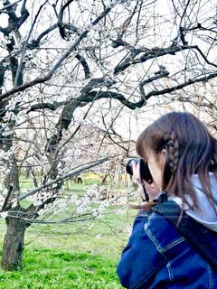 梅の花を撮る女性📸の写真・画像素材[1835404]