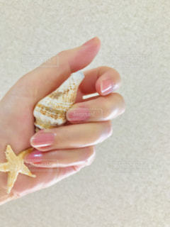 貝がらを握る手の写真・画像素材[1870201]