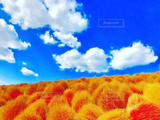 ハートっぽい白い雲💭の写真・画像素材[2420193]
