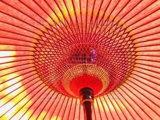 内側も素敵な野点傘の写真・画像素材[3671592]