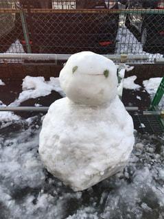 雪の中に立っている羊のグループ - No.911836