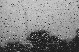 雨の中で飛んでいる鳥の群れの写真・画像素材[817926]