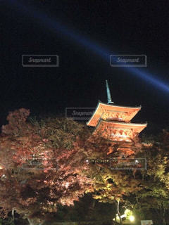 夜ライトアップ サインの写真・画像素材[754128]