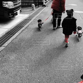歩道を歩く人の写真・画像素材[994685]