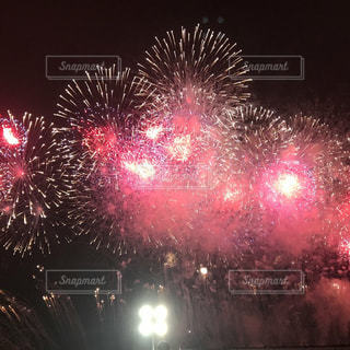 夜空の花火の写真・画像素材[1310376]
