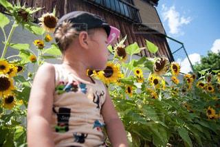 花の前に立っている少年の写真・画像素材[1454732]