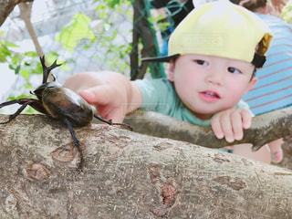 動物園に座っている小さな男の子の写真・画像素材[2115761]