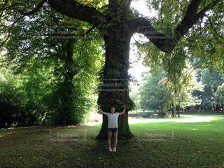 家族,空,公園,木,海外,青空,散歩,楽しい,人物,人,笑顔,ベルギー