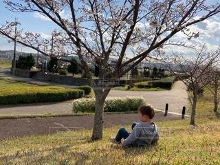 草の上に立っている小さな男の子の写真・画像素材[2548036]