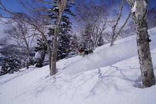 スポーツ,雪,白,スキー,スノーボード,バックカントリー,白馬
