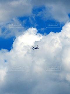 雲と飛行機の写真・画像素材[2419890]