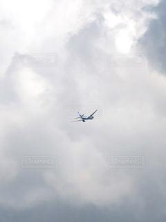 雲と飛行機の写真・画像素材[2419897]