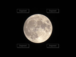 中秋の名月の写真・画像素材[3737167]