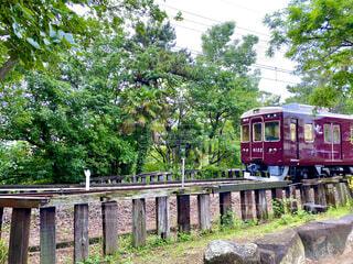 新緑と阪急電車の写真・画像素材[4433105]