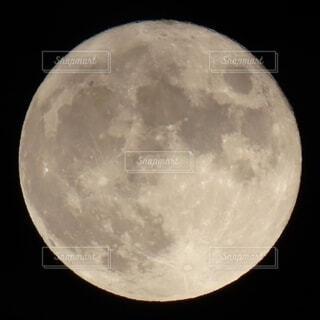 中秋の名月の写真・画像素材[4835089]