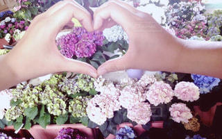 花,ハート,紫陽花,flower,友達