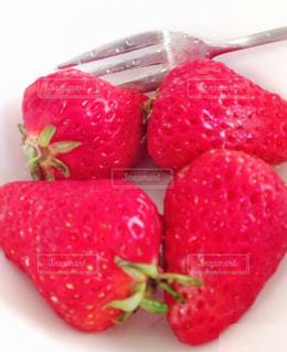苺,フルーツ,美味しい,strawberry,インスタ映え