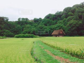 世界遺産 白川郷の写真・画像素材[789101]