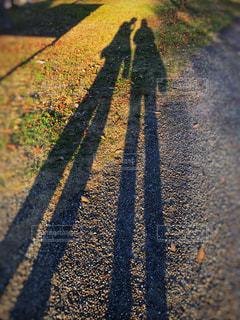 親子で散歩♪の写真・画像素材[1650412]