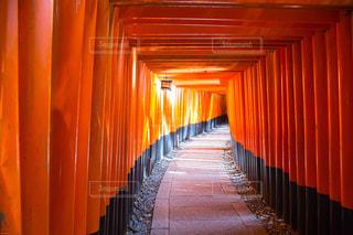 京都の観光スポットと言ったらここの写真・画像素材[930140]