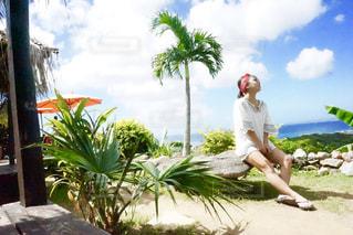 夏,沖縄,旅行,cafe,亜熱帯茶屋