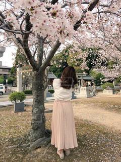 女性,春,桜,福岡,genic,春コーデ