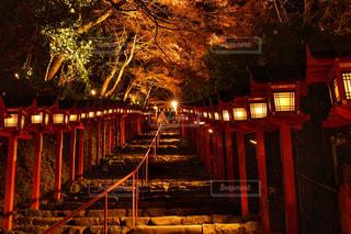 夜のライトアップされた橋の写真・画像素材[868564]