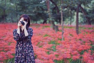 彼岸花畑のカメラマンの写真・画像素材[787170]