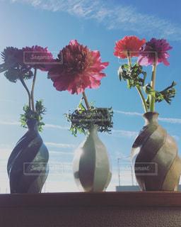 空,花,フラワーアレンジメント