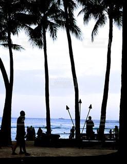 ビーチでヤシの木の横に立っている人々 のグループ - No.1217161