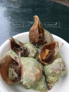 ランチ,フード,札幌,さっぽろオータムフェスト,美味しい物,オータムフェスト,焼きつぶ