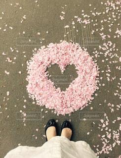 近くにピンクの花のアップ - No.709876