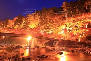 夜の街の景色の写真・画像素材[843824]