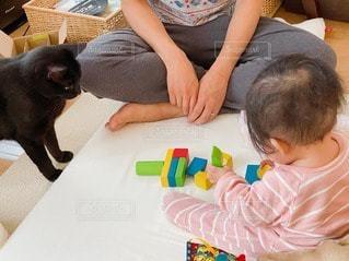 積木で遊ぶ親子とくろねこの写真・画像素材[3175517]