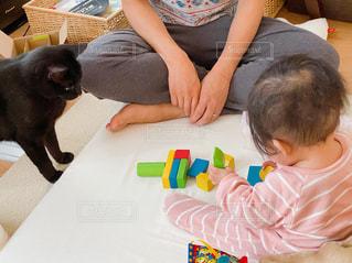 積木で遊ぶ親子と黒猫の写真・画像素材[3361777]