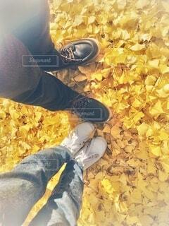 黄色の絨毯に立つ2人の足の写真・画像素材[3714186]