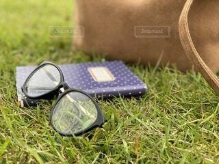 芝生の上の眼鏡の写真・画像素材[3759828]