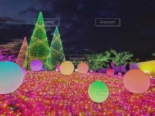 イルミネーションとクリスマスツリーの写真・画像素材[3979617]