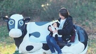 牛のベンチに座る親子の写真・画像素材[3980944]