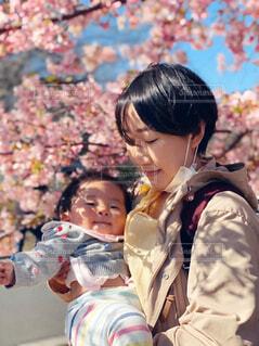 満開の桜と親子の写真・画像素材[4244281]