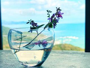 ガラスの器に入ったお花と海の写真・画像素材[4316637]
