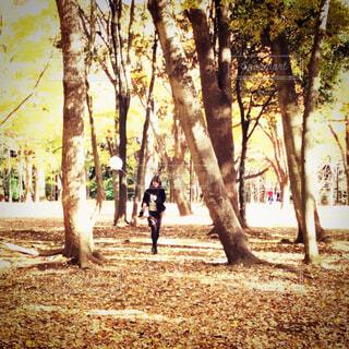 公園で風船を持つ女性の写真・画像素材[4424402]