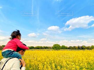 肩車で菜の花畑を眺める父娘の写真・画像素材[4491643]
