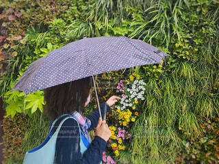 傘をさして花を触る女性の写真・画像素材[4553005]