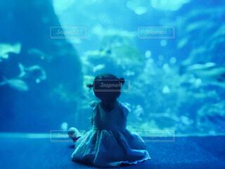 水族館の水槽の前に座る女の子の写真・画像素材[4593592]
