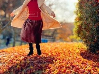 紅葉の絨毯と女性の足元の写真・画像素材[4815592]