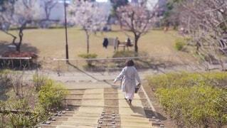 梅の花が咲く公園を歩く女性の後ろ姿の写真・画像素材[4822278]