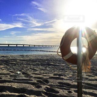 砂浜に座る人 - No.772566