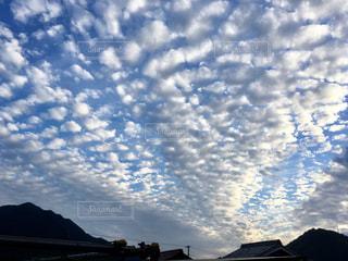 空,雲,うろこ雲,秋空